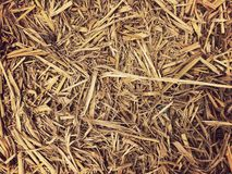 Dry grass,straw textured border background vintage style, hay wallpaper. Dry grass,straw textured border background vintage style,  hay wallpaper, Vintage wall royalty free stock images
