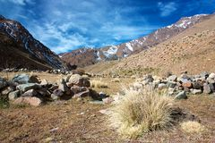 Dry grass turf in High Atlas mountains Royalty Free Stock Images