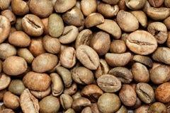 Dry green coffee beans (Coffea arabica) Royalty Free Stock Photo