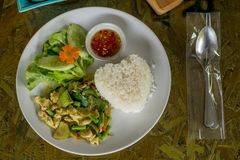 Dry Green Curry Chicken Stir fried by no soup with Jusmine Rice on white Dish for a Meal. Thai food selection royalty free stock images