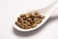 Dry green medical herbal tea in white ceramic spoon Stock Photo