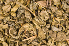 Dry green tea leaves Royalty Free Stock Images