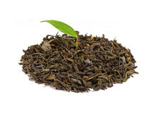 Dry green tea leaves with growing leaves. Royalty Free Stock Photography