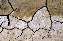 Dry ground. Dry and cracked ground in summer royalty free stock photo