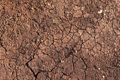 Dry ground. Close up photo of dry cracked ground in the sun Royalty Free Stock Photography
