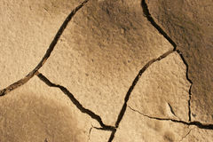 Dry ground. Cracks in a dried ground Royalty Free Stock Image