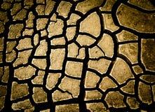 Dry ground Stock Photo