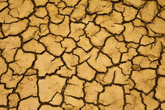 Dry ground. In countryside Thailand Stock Images