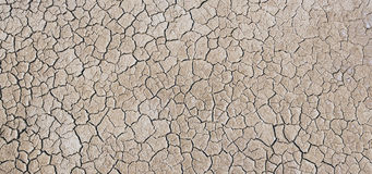 Dry ground Stock Photos