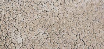 Dry ground. In a desert region Stock Photos