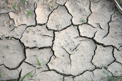 Dry ground. With cracks and grass Stock Photo
