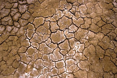 Dry ground. In the desert Stock Image