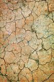 Dry ground. With cracks Stock Photography
