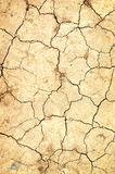 Dry ground. With cracks Royalty Free Stock Photos