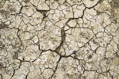 Dry ground. Dry brown ground cracked in hot area. Global warming Stock Image