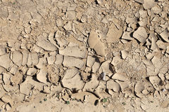 Dry ground. Can be used as background Royalty Free Stock Photo