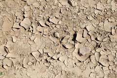 Dry ground. Can be used as background Royalty Free Stock Image