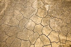 Dry ground. Cracked and Arid  Ground Stock Photos