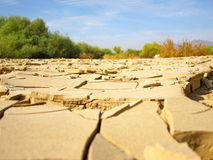 Dry Ground. Cracked dry ground in the desert of Egypt Stock Images