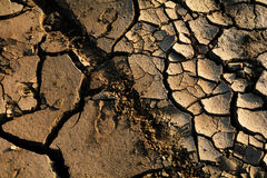 Dry Ground Stock Image