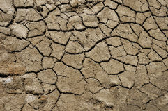 Dry ground Stock Images