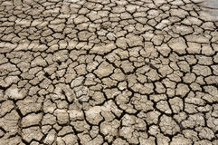 Dry ground. Cracked textured dry ground nature surface background Stock Images