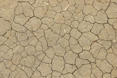 Dry ground Royalty Free Stock Photo