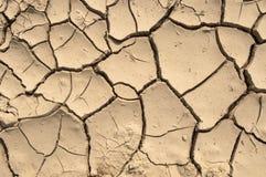 Dry ground texture Royalty Free Stock Photo