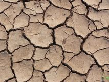 Dry ground texture Royalty Free Stock Photos