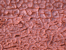 Dry ground texture. Red dry ground in the desert Stock Photography