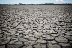 Dry ground texture Stock Images