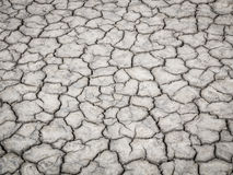 Dry ground texture in salt pan. Royalty Free Stock Photo