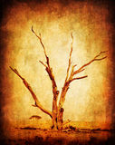 Dry grunge african tree. Dry grunge African desert tree, with old dirty texture effect stock image