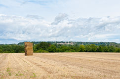 Dry Hay Royalty Free Stock Image