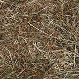 Dry hay as a  background Royalty Free Stock Photography