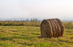 Dry hay bale Royalty Free Stock Photos