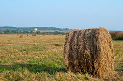 Dry hay Royalty Free Stock Images