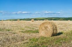 Dry hay rolls Royalty Free Stock Photos