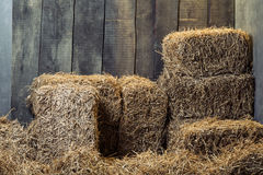 Dry hay stacks. In wooden barn interior stock images