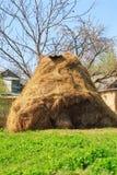 Dry haystack Stock Image