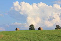 Dry haystacks after harvest on a green summer field with big clouds and blue sky stock photo