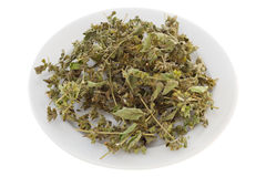Dry herb melissa. On the white plate Royalty Free Stock Image