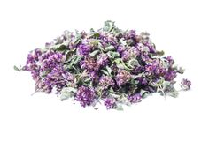 Dry herb Origanum vulgare. Isolated on white background Stock Photography