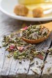 Dry herb tea in wood spoon Stock Images