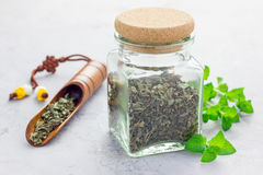 Dry herbal mint tea in glass jar with fresh peppermint on background, horizontal Stock Photography