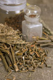 Dry herbals, different medicinal herbs - Willow bark medical Stock Photo