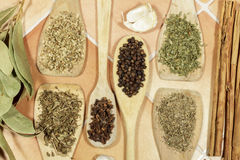 Dry herbs and seeds used as spices in cooking Royalty Free Stock Image