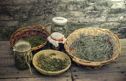Dry Herbs Stock Photography