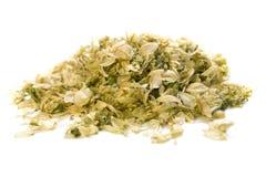 Dry hop isolated. On white backgraund Stock Image