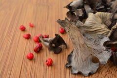 Dry Horn of plenty mushroom Stock Photos